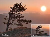 Bild von Nature effects 7 für PC [PC-Software]