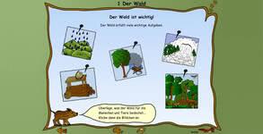 Bild von Fit in Sachkunde: Wald [PC-Software]