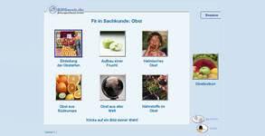 Bild von Fit in Sachkunde: Obst [PC-Software]