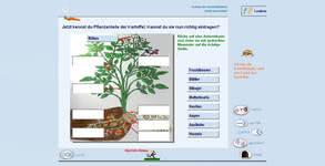 Bild von Fit in Sachkunde: Gemüse [PC-Software]