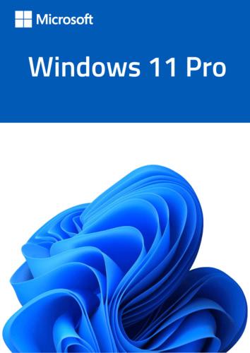 Verpackung von Windows 11 Pro OEM Key [PC-Software]